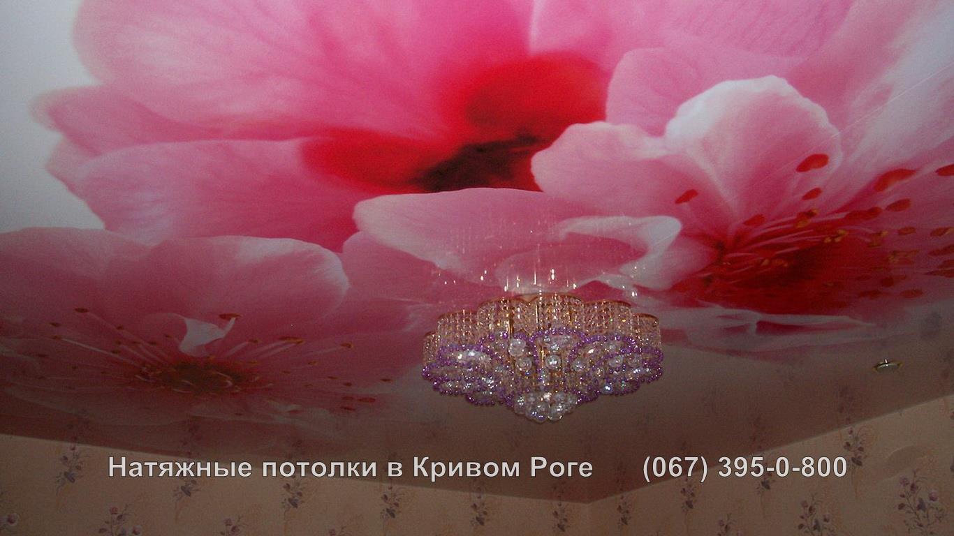 potolki_photopechat-14