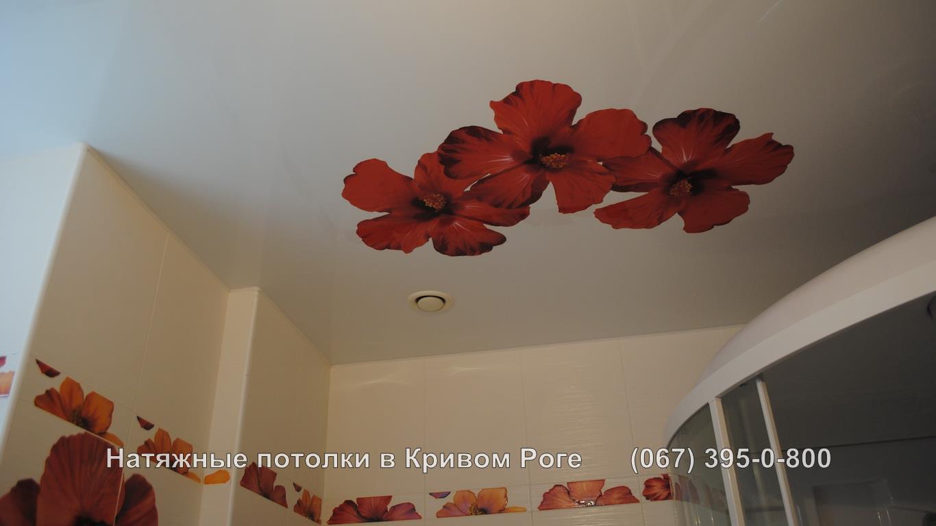 potolki_photopechat-20
