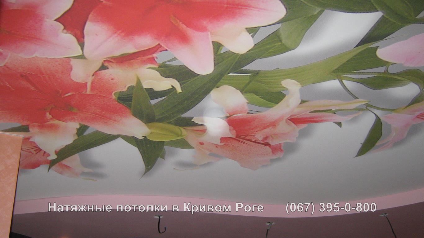 potolki_photopechat-22