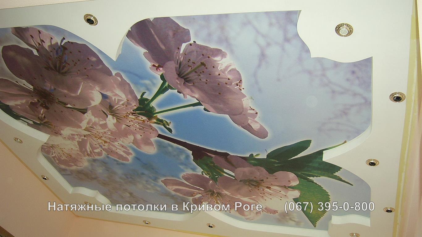 potolki_photopechat-26