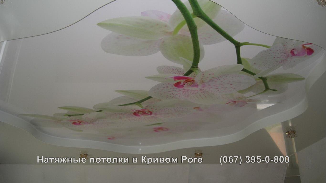 potolki_photopechat-9